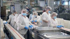 Οι άνθρωποι εργάζονται σε μια δυνατότητα, συσκευάζοντας τα προϊόντα από έναν μεταφορέα φιλμ μικρού μήκους