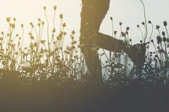 Οι άνθρωποι θαμπάδων ασκούν με στοκ φωτογραφία με δικαίωμα ελεύθερης χρήσης