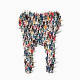 Οι άνθρωποι διαμορφώνουν το δόντι οδοντικό Στοκ εικόνα με δικαίωμα ελεύθερης χρήσης