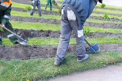 Οι άνθρωποι με τα φτυάρια σκάβουν το έδαφος, κάνουν τα κρεβάτια λουλουδιών, κηπουροί Στοκ Εικόνες
