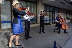 Οι άνθρωποι παίζουν τα όργανα σειράς Στοκ εικόνα με δικαίωμα ελεύθερης χρήσης