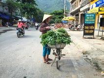 Οι άνθρωποι πωλούν τα λαχανικά στην οδό στο εκτάριο μακροχρόνιο, Βιετνάμ Στοκ εικόνες με δικαίωμα ελεύθερης χρήσης