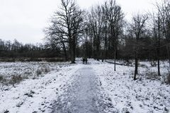 Οι άνθρωποι στην πορεία ενός χειμώνα σταθμεύουν Στοκ Εικόνες