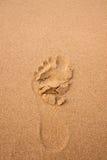 οι άνθρωποι στρώνουν με άμμο το ίχνος σύστασης Στοκ Εικόνα