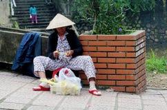 Οι άνθρωποι του Βιετνάμ πωλούν τα φρούτα Στοκ Εικόνες