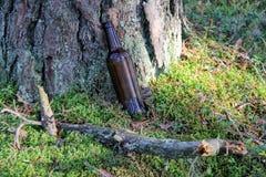 Οι άνθρωποι φεύγουν bootle κάτω από το δέντρο Στοκ εικόνες με δικαίωμα ελεύθερης χρήσης
