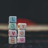Οι λέξεις σας αγαπούν που γράφεστε στους κεραμικούς φραγμούς Στοκ Εικόνες