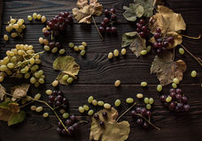 Οι δέσμες των σταφυλιών, ξεραίνουν τα φύλλα στη σκοτεινή ξύλινη επιφάνεια Στοκ εικόνα με δικαίωμα ελεύθερης χρήσης