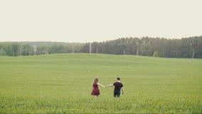 Οι αγαπώντας άνθρωποι κρατούν τα χέρια και το φιλί καθώς περπατούν σε έναν τομέα βρωμών ευτυχής αγάπη ζευγών Δάσος στο υπόβαθρο Α φιλμ μικρού μήκους