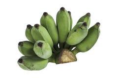 Οι ακατέργαστες απομονωμένες μπανάνες Στοκ Εικόνες