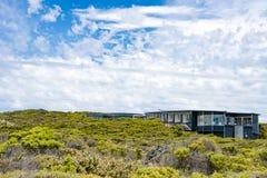 Οι ακολουθίες του νότιου ωκεανού κατοικούν, μεταξύ της περιοχής με χαμηλή βλάστηση, το νησί καγκουρό, Αυστραλία στοκ φωτογραφία