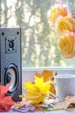 Οι ακουστικοί ομιλητές και τα κίτρινα τριαντάφυλλα με το σφένδαμνο βγάζουν φύλλα κοντά στο παράθυρο στοκ φωτογραφίες
