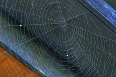 Οι ακτινωτές γραμμές ενός Ιστού αραχνών χωρίς την αράχνη Στοκ φωτογραφία με δικαίωμα ελεύθερης χρήσης