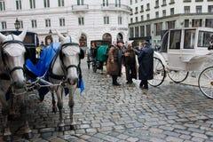 Οι αμαξάδες έχουν τη συναισθηματική συνομιλία κοντά στα hors Στοκ Εικόνες