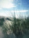 Οι αμμόλοφοι άμμου του ST annes lancashire στοκ φωτογραφίες με δικαίωμα ελεύθερης χρήσης