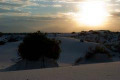 Οι αμμόλοφοι είναι ζωντανό εθνικό πάρκο αμμόλοφων άμμων Νέων Μεξικό άσπρο Στοκ Εικόνες