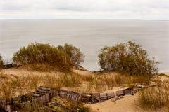 Οι αμμόλοφοι της θάλασσας της Βαλτικής Στοκ Εικόνες
