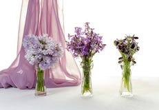 Οι ανθοδέσμες των wildflowers στοκ εικόνες με δικαίωμα ελεύθερης χρήσης