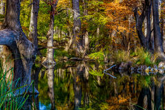 Οι αντανακλάσεις κρυστάλλου του φυλλώματος πτώσης συγκεντρώνουν το κρατικό πάρκο, Τέξας Στοκ Εικόνες