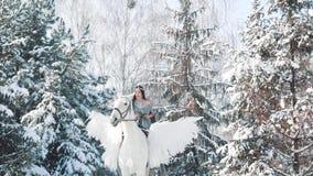 Οι αξέχαστες θετικές συγκινήσεις, πρώτο άλογο γύρου, όμορφη κυρία στο μακρύ γκρίζο ακρωτήριο με τους γυμνούς ώμους κάθονται στο λ απόθεμα βίντεο