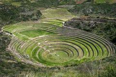 Οι απίστευτοι αρχαίοι κύκλοι Moray στο Περού Στοκ Φωτογραφία