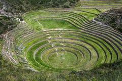 Οι απίστευτοι αρχαίοι κύκλοι Moray στο Περού Στοκ Εικόνα