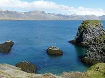 Οι απότομοι βράχοι σε Arnarstapi, Ισλανδία Στοκ φωτογραφία με δικαίωμα ελεύθερης χρήσης