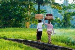 Οι από το Μπαλί γυναίκες στα παραδοσιακά κοστούμια εκπληρώνουν τις θρησκευτικές τελετές και τις προσφορές στους Θεούς στοκ φωτογραφία με δικαίωμα ελεύθερης χρήσης