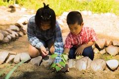 Οι ασιατικοί αγρότες διδάσκουν τα παιδιά τους για να φροντίσουν για τις εγκαταστάσεις με την υπομονή και την προσπάθεια Στοκ Εικόνες