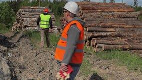 Οι δασικοί ανώτεροι υπάλληλοι με το κύτταρο τηλεφωνούν πλησίον στο σωρό ξυλείας φιλμ μικρού μήκους