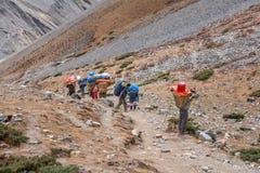 Οι αχθοφόροι φέρνουν τις αποσκευές στο κύκλωμα Annapurna στο Νεπάλ Στοκ Εικόνα