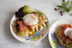 Οι βάφλες με το σολομό, κυνήγησαν λαθραία αυγό και πράσινη σαλάτα Στοκ Φωτογραφία
