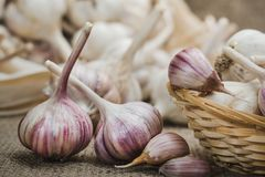 Οι βολβοί και τα γαρίφαλα του φυσικού οργανικού σκόρδου σε ένα χαλί λινού και σε ένα σπιτικό καλάθι κλείνουν επάνω στοκ φωτογραφίες με δικαίωμα ελεύθερης χρήσης