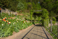 Οι βοτανικοί κήποι Trauttmansdorff Castle, Merano, νότιο Τύρολο, Ιταλία, στοκ εικόνες
