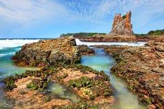 Οι βράχοι Kiama καθεδρικών ναών κατεβάζουν την Αυστραλία Στοκ Εικόνες