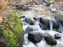 Οι βόλτες ενός κολπίσκου κάτω από μερικούς βράχους ως βεραμάν βρύο κάλυψαν τα πλαίσια λίθων τα νερά Στοκ Φωτογραφίες