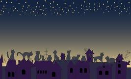 Οι γάτες εξετάζουν το νυχτερινό ουρανό Στοκ εικόνα με δικαίωμα ελεύθερης χρήσης
