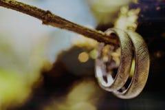 Οι γαμήλιες λεπτομέρειες δαχτυλιδιών στοκ εικόνες