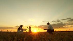 Οι γονείς διδάσκουν για να περπατήσουν το μικρό παιδί, το μικρό κορίτσι κάνει τα πρώτα βήματά της στον ήλιο, σε αργή κίνηση παιχν απόθεμα βίντεο