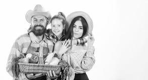 Οι γονείς και η κόρη γιορτάζουν την έννοια φεστιβάλ συγκομιδών συγκομιδών Συγκομιδή λαχανικών κηπουρών οικογενειακών αγροτών που  στοκ φωτογραφία