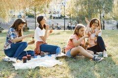 Οι γυναίκες με τα παιδιά στο ηλιοβασίλεμα που στηρίζεται στο πάρκο, πικ-νίκ, σαπούνι βράζουν στοκ εικόνα με δικαίωμα ελεύθερης χρήσης