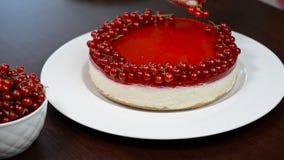Οι γυναίκες ` s δίνουν διακοσμημένο cheesecake την κόκκινη σταφίδα φιλμ μικρού μήκους