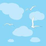 Οι γλάροι πετούν στα ύψη στον ουρανό Στοκ εικόνες με δικαίωμα ελεύθερης χρήσης