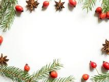 Οι διακοσμήσεις Χριστουγέννων σε ένα άσπρο υπόβαθρο, ροδαλά ισχία μούρων, αστέρια, έλατο διακλαδίζονται διάστημα αντιγράφων Στοκ φωτογραφίες με δικαίωμα ελεύθερης χρήσης