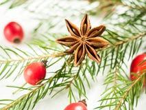 Οι διακοσμήσεις Χριστουγέννων σε ένα άσπρο υπόβαθρο, ροδαλά ισχία μούρων, αστέρια, έλατο διακλαδίζονται Στοκ Εικόνα