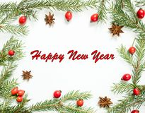 Οι διακοσμήσεις Χριστουγέννων σε ένα άσπρο υπόβαθρο, ροδαλά ισχία μούρων, αστέρια, έλατο διακλαδίζονται Η επιγραφή καλή χρονιά Στοκ φωτογραφία με δικαίωμα ελεύθερης χρήσης