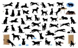Οι διαφορετικές σκιαγραφίες σκυλιών καθορισμένες, περίπατος κατοικίδιων ζώων, κάθονται, παίζουν, τρώνε, κλέβουν τα τρόφιμα, αποφλ διανυσματική απεικόνιση