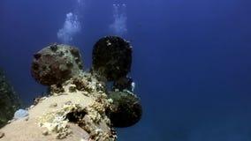 Οι δύτες σκαφάνδρων κοντά στη βίδα του ναυαγίου Σάλεμ εκφράζουν τη βαθιά υποβρύχια Ερυθρά Θάλασσα απόθεμα βίντεο