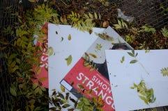 Οι εκλογές του Συμβουλίου playcard πετούν μακριά από τη βαριά θύελλα Στοκ Εικόνα
