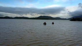 Οι ελέφαντες με τους ανθρώπους στην κορυφή λούζουν στη ρηχή λίμνη φιλμ μικρού μήκους